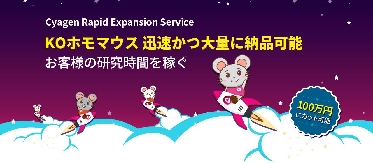 Cyagen Rapid Expansion Service | Cyagen Korea