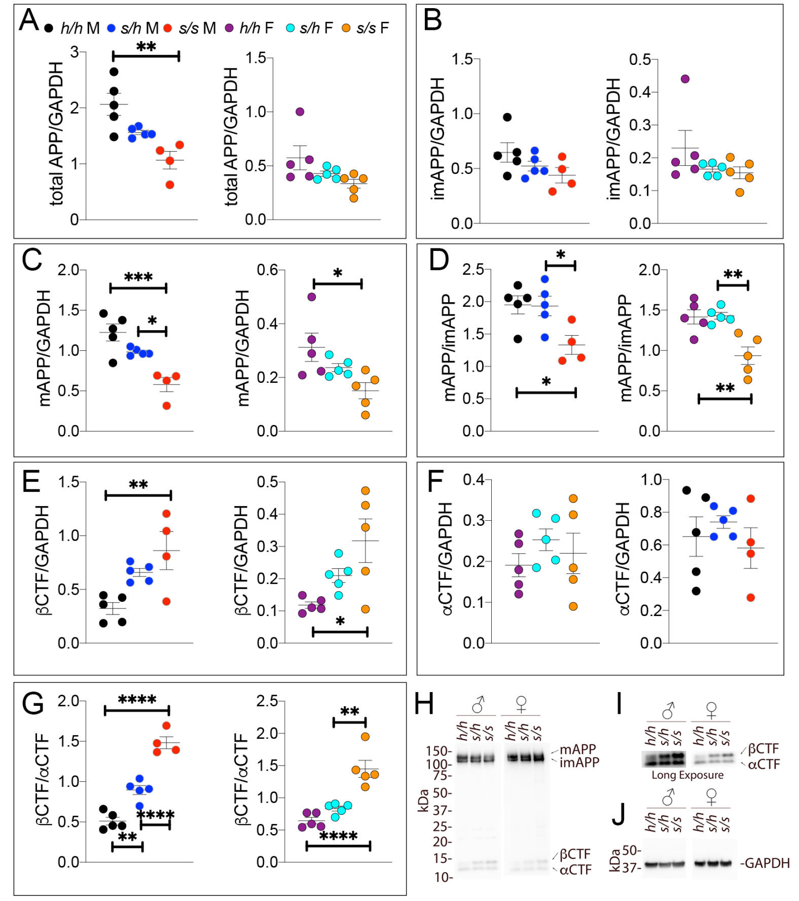 Detection of Aβ splicing intermediates