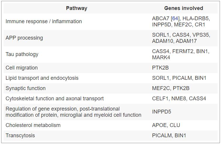 Pathways influencing AD and representative genes