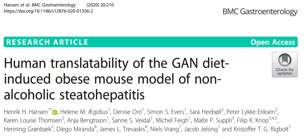 Gubra-Amylin NASH (GAN) 饮食诱导肥胖 (diet-induced obese,DIO) 小鼠模型(GAN DIO-NASH小鼠) | 赛业生物