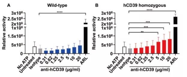 图2. hCD39是有功效的:αhCD39抗体能特异性降低hCD39的活性