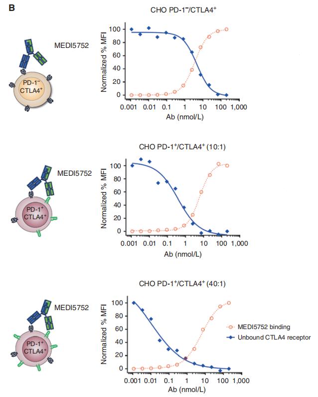 图3. 与PD-1- CTLA-4+ 单阳性细胞相比,MEDI575优先与PD-1+ CTLA-4+ 双阳性细胞上的CTLA-4结合-2