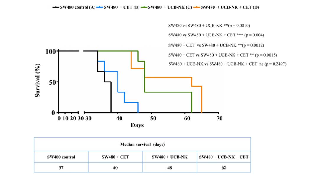 图3. UCB-NK治疗能显著延长荷瘤(具有CET抗性且携带RAS突变的肿瘤)小鼠的生存期 | 赛业生物