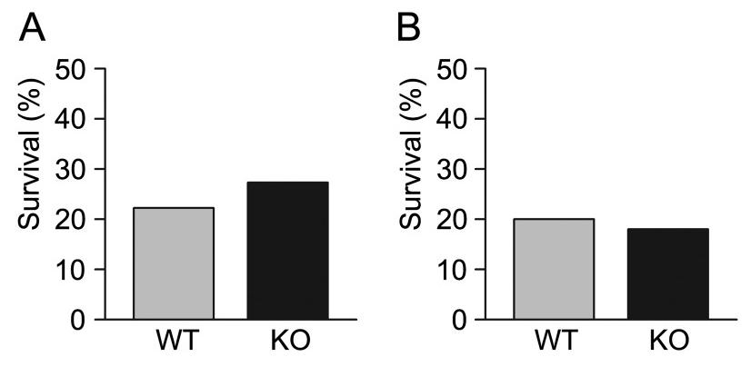 图5. 野生型(WT)和Calca敲除(KO)小鼠对肺炎感染的反应   赛业生物