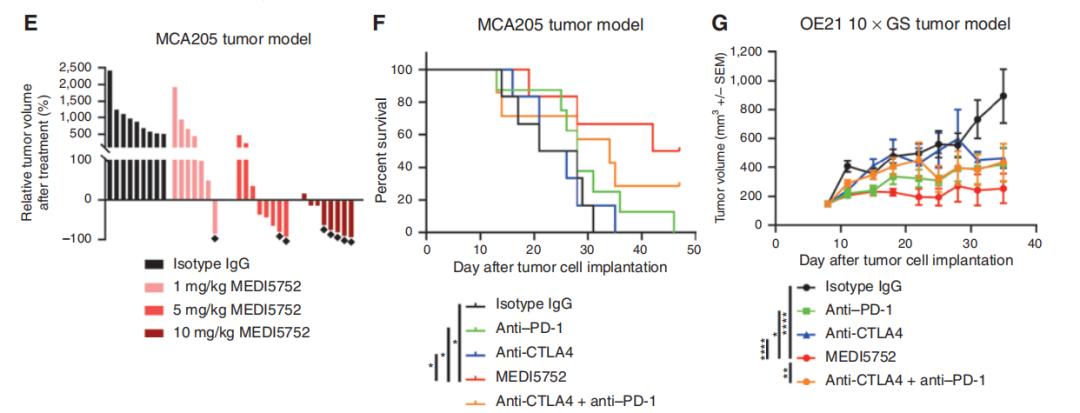 图6. MEDI5752在体内能优先定位于肿瘤部位并抑制肿瘤生长-2