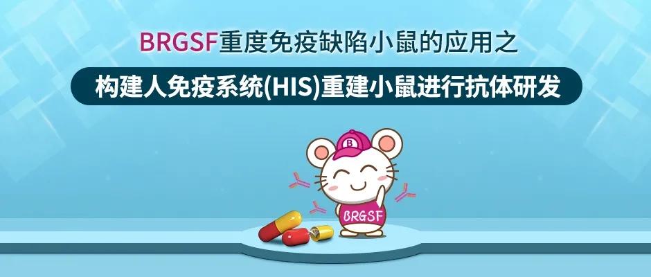 BRGSF重度免疫缺陷小鼠的应用之构建人免疫系统(HIS)重建小鼠进行抗体研发