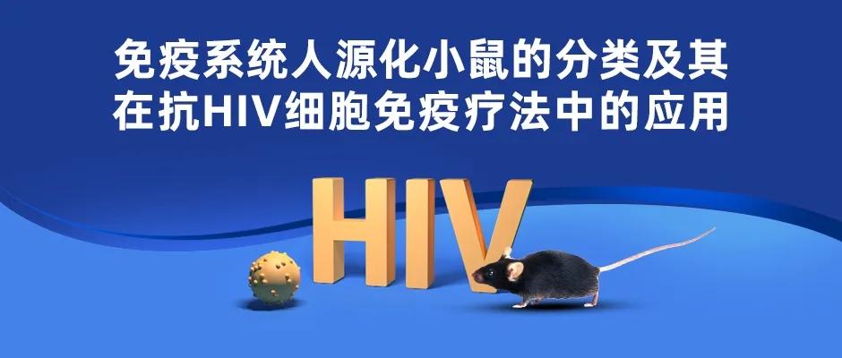 免疫系统人源化小鼠的分类及其在抗HIV细胞免疫疗法中的应用