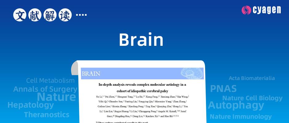 脑瘫的复杂分子病因学