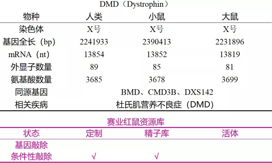 表1. DMD的基本信息