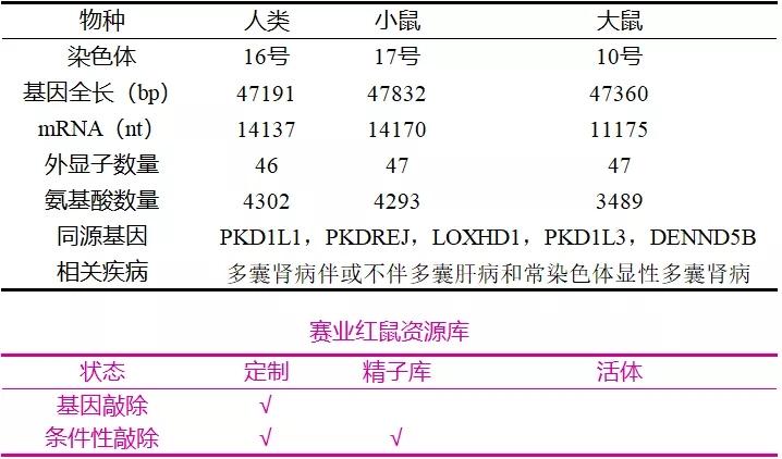 表1. PKD1的基本信息   赛业生物