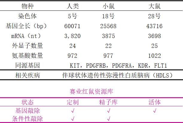 表1. CSF1R的基本信息