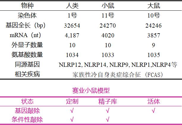 NLRP基因敲除小鼠   赛业生物