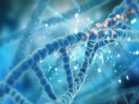 Nature Biotechnology杂志:CRISPR-Cas9最新研究进展