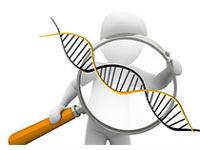 以CRISPR/Cas9技术为基础,创新基因治疗方法