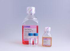 人脐血间充质干细胞完全培养基