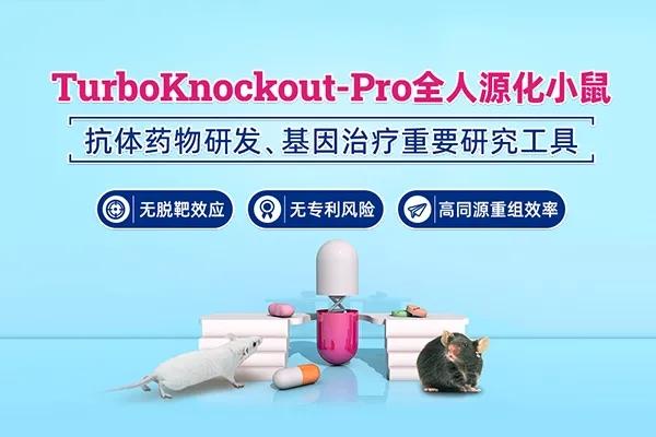 TurboKnockout-Pro全人源化小鼠 | 赛业生物