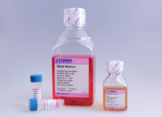 Human iPS Plat-A 细胞培养基 Human iPS Plat-A 细胞培养基 HEKPA-90011