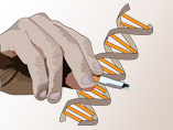 A bacterial gene to help smokers quit