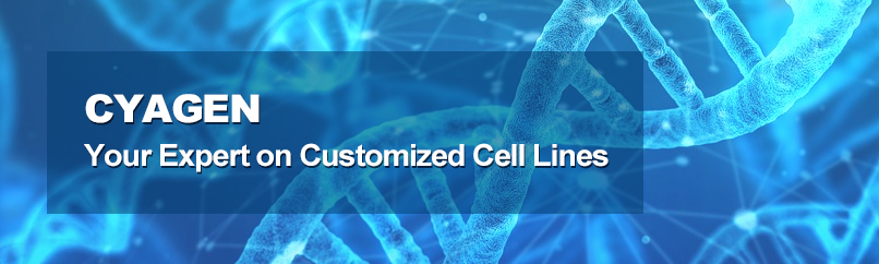 Customized Cell Lines