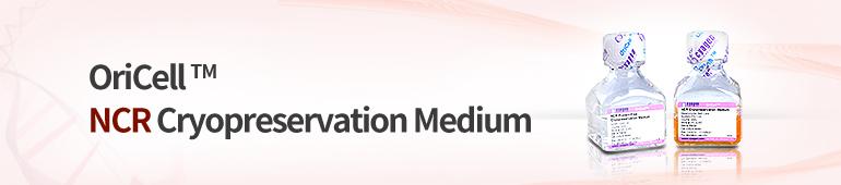 Cell Cryopreservation Media