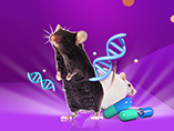 Human Antibody Discovery Using In-vivo Mouse Models