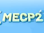 Pathogenic Gene of Neurodevelopmental Disorders - MECP2 Gene
