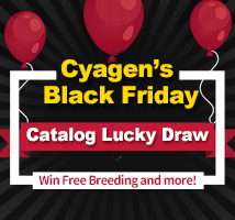 Cyagen's Lucky Draw for Knockout Mouse Catalog Models