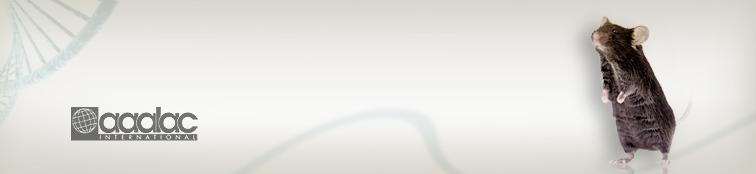 ESC Knockout & Knockin Mice | Services include conditional knockout, conventional knockout, and knockin | Cyagen US Inc.