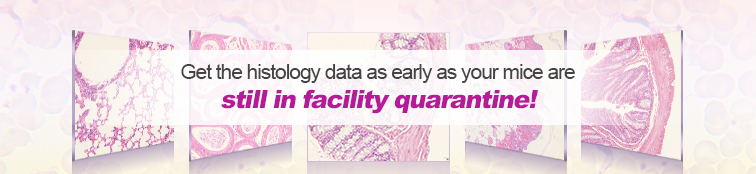 histology service