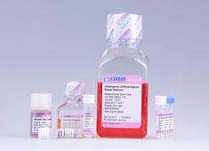 C57BL/6小鼠脂肪间充质干细胞成骨诱导分化培养基