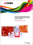 Mesenchymal Stem Cell Osteogenic Differentiation Medium (GUXMX-90021)