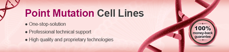 Point Mutation Cell Lines