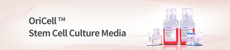 Stem Cell Culture Media