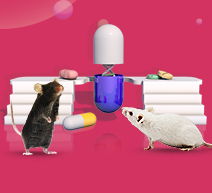 Human Antibody Mouse Model Customization
