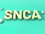 SNCA: A Pathogenic Gene of Neurodegenerative Diseases