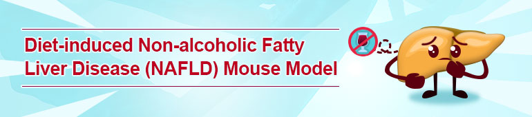 Diet-induced Non-alcoholic Fatty Liver Disease (NAFLD) Mouse Model