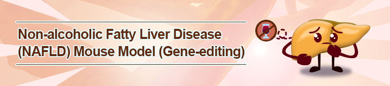 Non-alcoholic Fatty Liver Disease (NAFLD) Mouse Model (Gene-editing)
