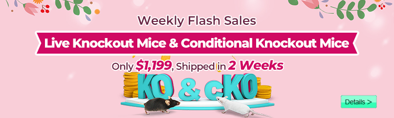Live KO Mice Shipped in Just 2 Weeks, Only $5,999