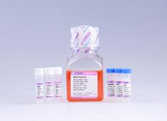 Neural Stem Cell Growth Medium GUXNX-90011