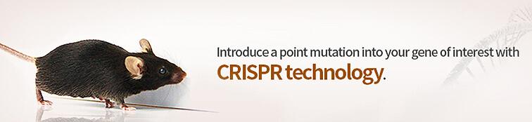 crispr point mutation mice | Cyagen