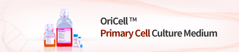 Primary Cell Culture Media