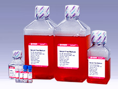 NK细胞无血清培养试剂盒II