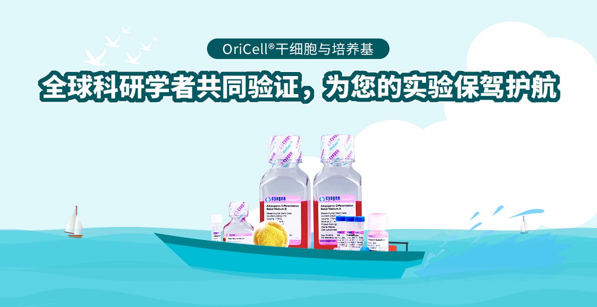 OriCell®干细胞与培养基 全球科研学者共同验证,为您的实验保驾护航