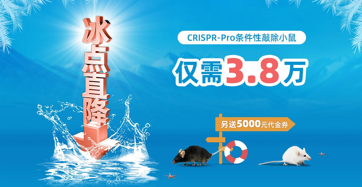 CRISPR-Pro条件性敲除小鼠 冰点直降 仅需3.8万 另送5000元代金券