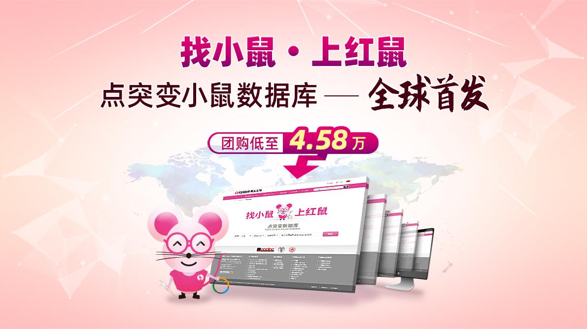 找小鼠 上红鼠  点突变小鼠数据库 全球首发  团购低至4.58万