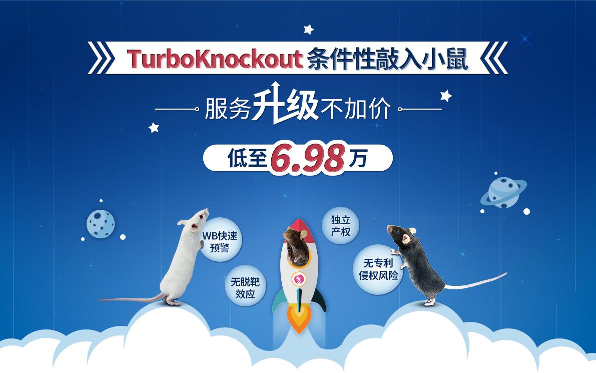 TurboKnockout条件性敲入小鼠 服务升级不加价 WB快速预警+无脱靶效应+独立产权+无专利侵权风险 低至6.98万