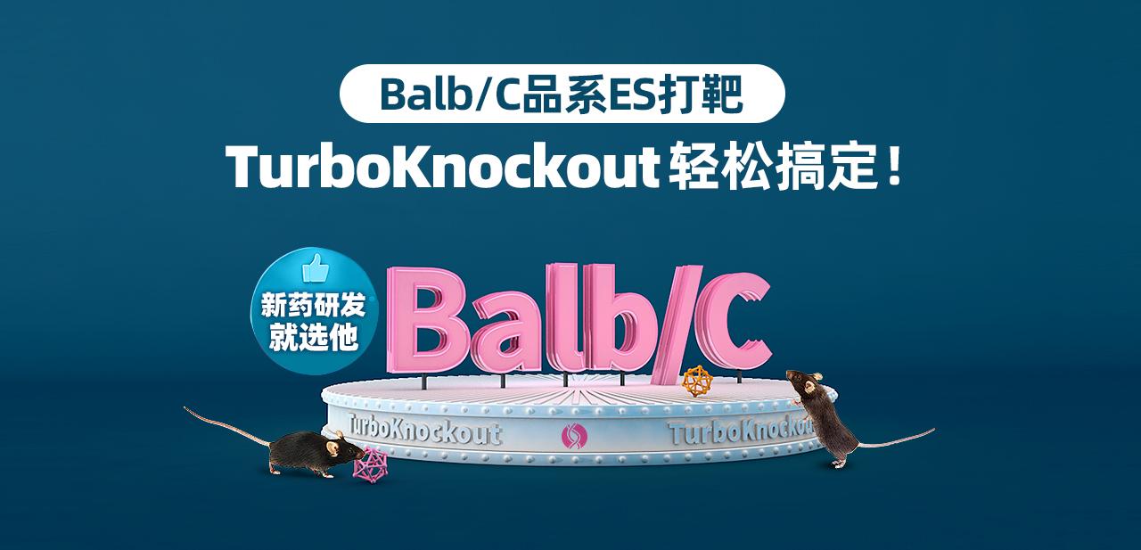 Balb/C品系ES打靶 TurboKnockout轻松搞定! 新药研发就选他