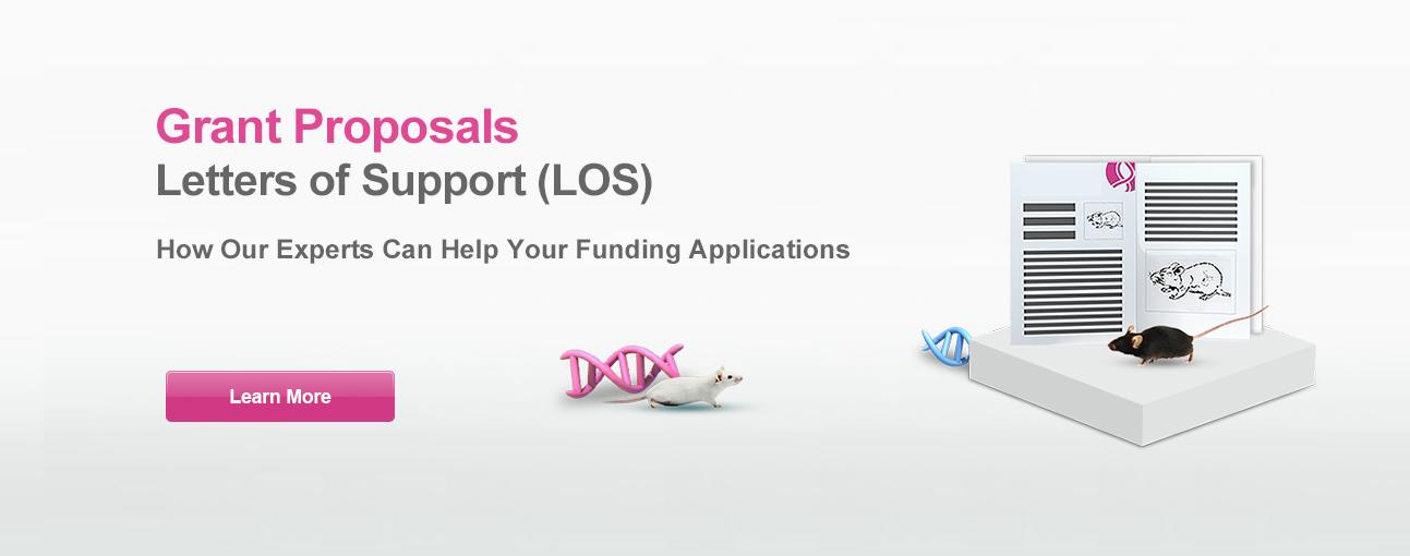 Grant Application Support Letter