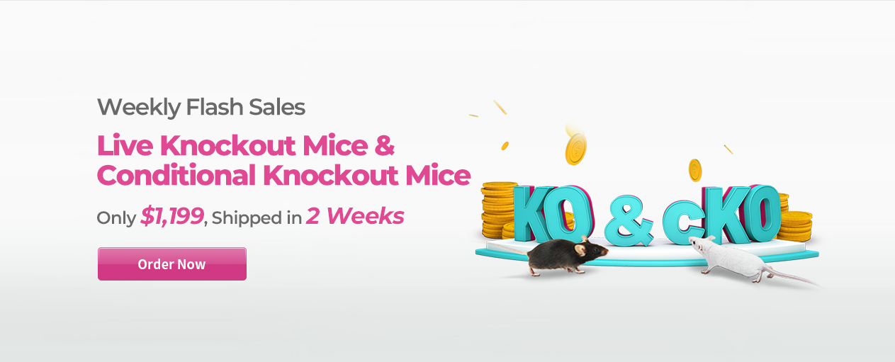 Live KO/cKO Mice, Shipped in 2 Weeks, only $1,199