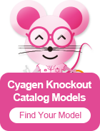 Knockout Mice | Ready-to-Use KO Mice Model